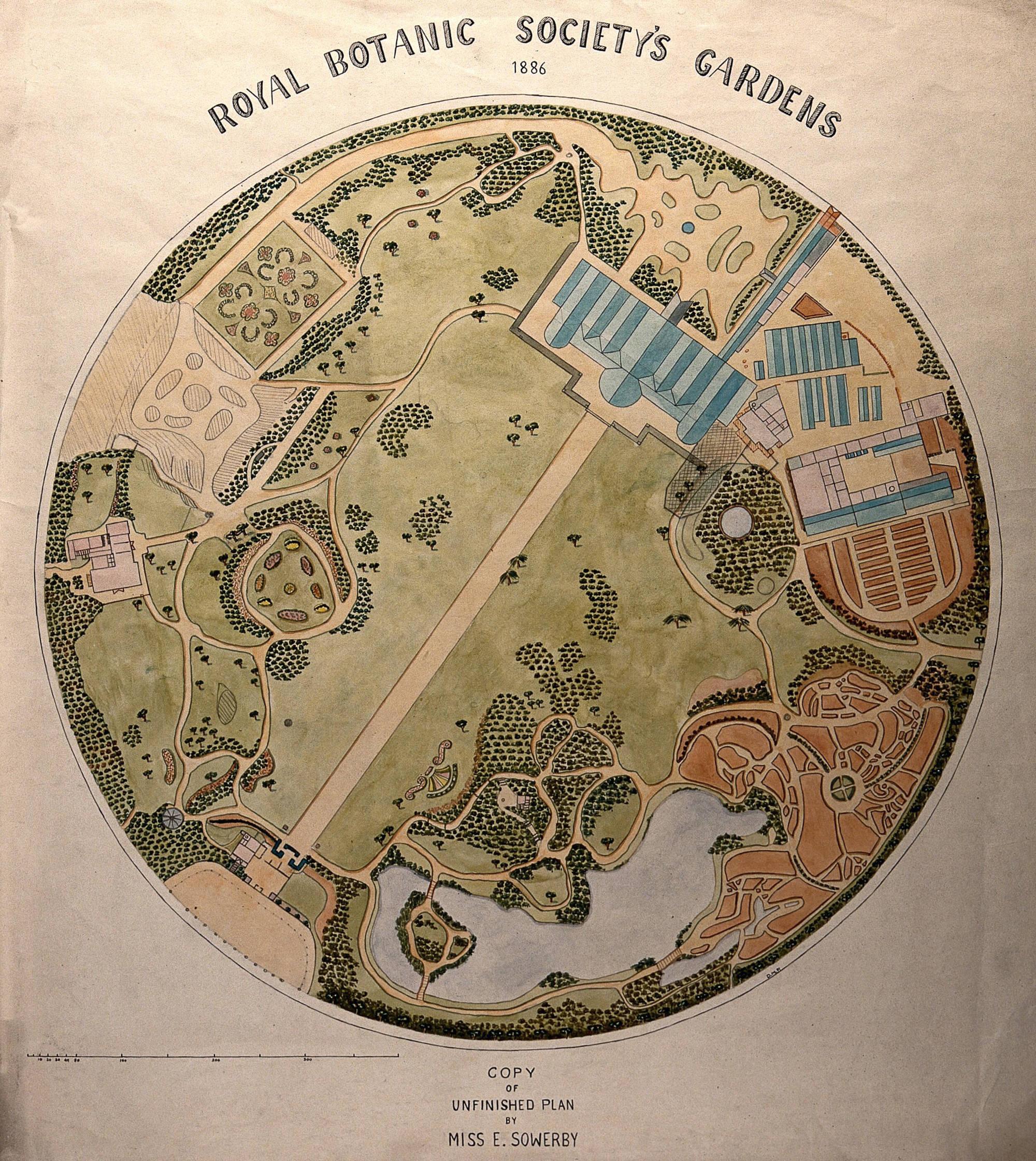Drawing of Royal Botanic Gardens, Regent's Park.